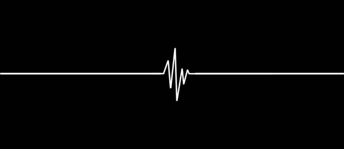 Netgear Heart Monitor